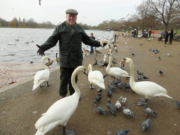 Bill and the Swans 4 (Blog)